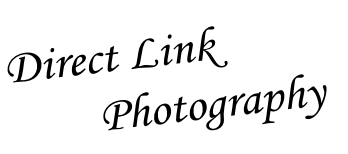 Direct Link